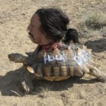You act like you never saw a severed human head on a tortoise before
