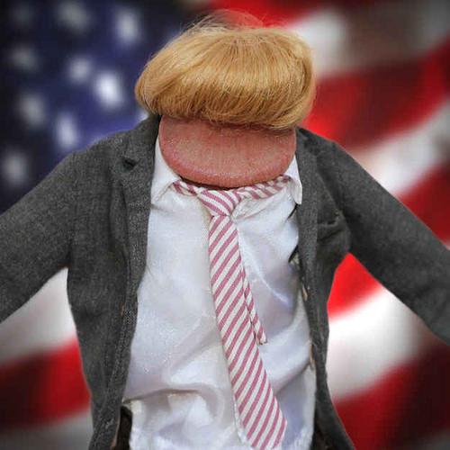 Make America Great Again photo